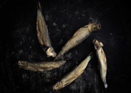 Kieler Sprotten - Räucherfisch - Fisch - Food-Fotografie - Fotograf-Michael Nölke
